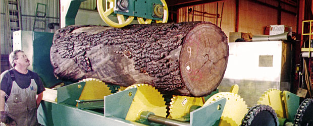 Ts Manufacturing Log Reducers